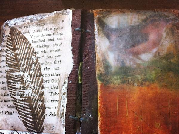 Acorn book 1st spread