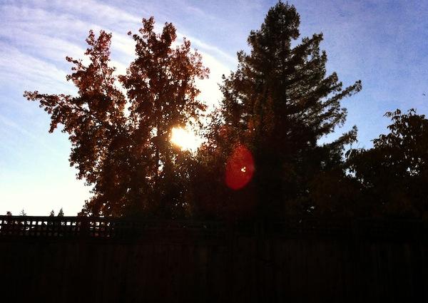 Fall sunset copy
