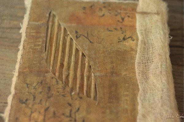 Cardboard book back cover_edited-1